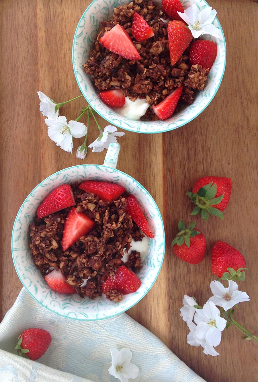 Triple Chocolate Paleo Granola (Grain/Dairy/Sugar Free) | GrokGrub.com