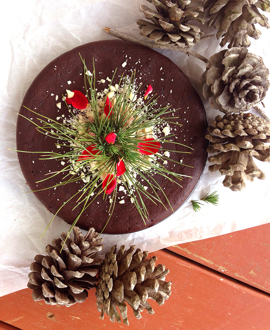 Chocolate Gingerbread Cake (nut-free, gluten-free, dairy-free) | Fresh Planet Flavor