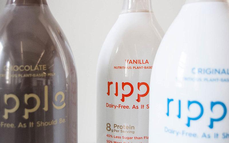 Unbiased Pea Milk Review: Evaluatiing Taste, Healthiness, and Sustainability. Click to read and get the bonus vegan Blackberry Chocolate Ice Cream recipe! GrokGrub.com