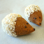 Hedgehog Cookies: 75 Healthy Kid-Friendly Snacks (allergy-friendly for every occasion) | GrokGrub.com